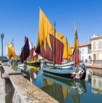 752443_448_295_FSImage_1_edit_Fotolia_77327613_cesenatico